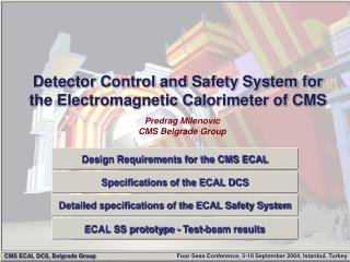 Detector Control and Safety System for the Electromagnetic Calorimeter of CMS