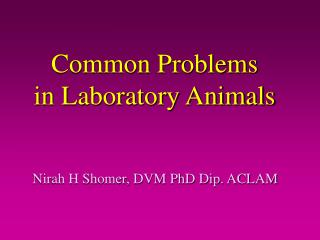 Common Problems  in Laboratory Animals