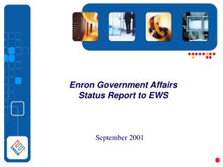Enron Government Affairs  Status Report to EWS