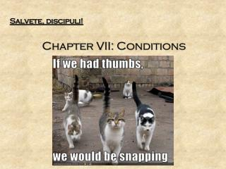 Salvete, discipuli! Chapter VII: Conditions