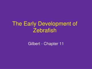 The Early Development of Zebrafish