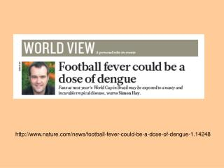 nature/news/football-fever-could-be-a-dose-of-dengue-1.14248