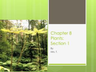 Chapter 8 Plants: Section 1