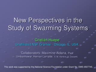 New Perspectives in the Study of Swarming Systems