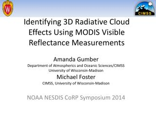 Identifying 3D Radiative Cloud Effects Using MODIS Visible Reflectance Measurements