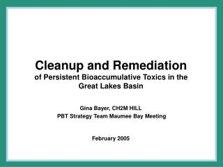 Cleanup and Remediation  of Persistent Bioaccumulative Toxics in the Great Lakes Basin