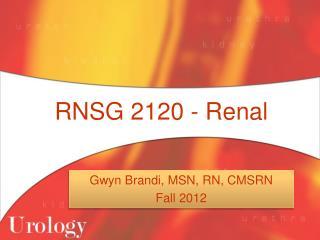 RNSG 2120 - Renal