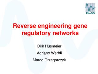 Reverse engineering gene regulatory networks