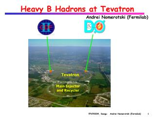 Heavy B Hadrons at Tevatron