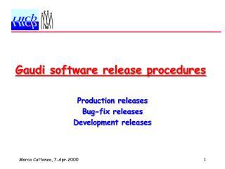 Gaudi software release procedures