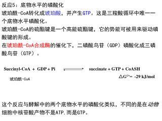 反应 5 :底物水平的磷酸化 琥珀酰 -CoA 转化成 琥珀酸 ,并产生 GTP 。这是三羧酸循环中唯一一个底物水平磷酸化。