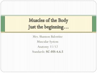 Muscles of the Body Just the beginning…