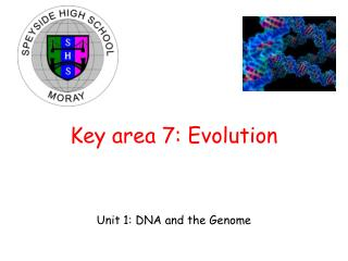 Key area 7: Evolution