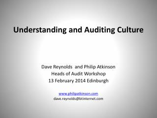 Understanding and Auditing Culture
