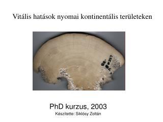 PhD kurzus, 2003 Készítette: Siklósy Zoltán