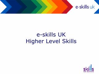 e-skills UK Higher Level Skills