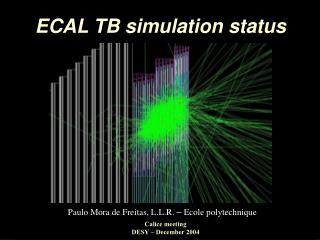 ECAL TB simulation status