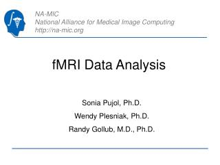 FMRI Data Analysis