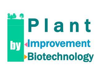 P l a n t Improvement Biotechnology
