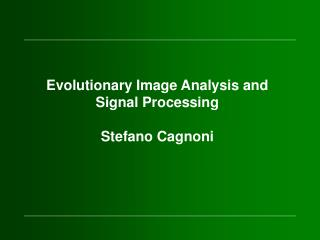 Evolutionary Image Analysis and Signal Processing Stefano Cagnoni