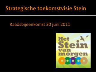 Strategische toekomstvisie Stein