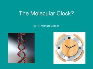 The Molecular Clock?