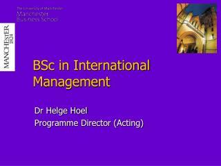 BSc in International Management