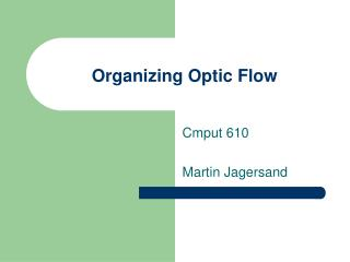 Organizing Optic Flow