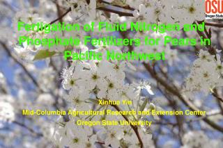 Fertigation of Fluid Nitrogen and Phosphate Fertilizers for Pears in Pacific Northwest