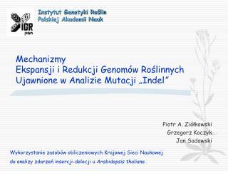 Piotr A. Ziółkowski Grzegorz Koczyk Jan Sadowski