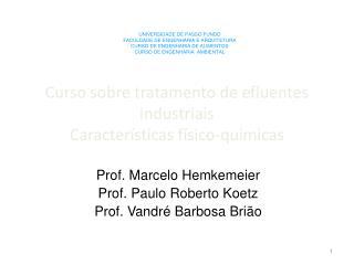 Curso sobre tratamento de efluentes industriais Características físico-quimicas