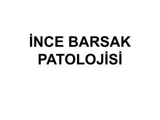 İNCE BARSAK PATOLOJİSİ