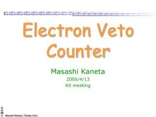 Electron Veto Counter
