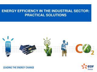 ENERGY EFFICIENCY IN THE INDUSTRIAL SECTOR: PRACTICAL SOLUTIONS