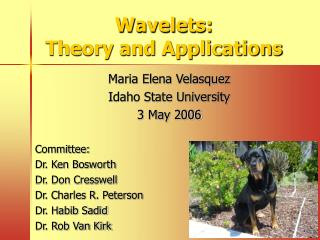 Wavelets:  Theory and Applications