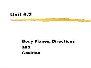 Unit 6.2