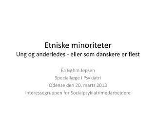 Etniske minoriteter Ung og anderledes - eller som danskere er flest