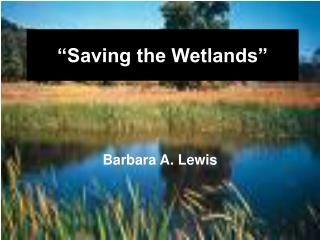 """Saving the Wetlands"""