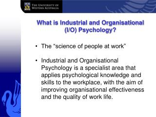 What is Industrial and Organisational (I/O) Psychology?