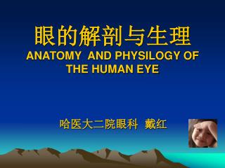 眼的解剖与生理 ANATOMY AND PHYSILOGY OF THE HUMAN EYE