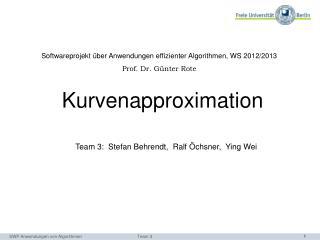 Softwareprojekt über Anwendungen effizienter Algorithmen, WS 2012/2013 Prof . Dr . Günter Rote
