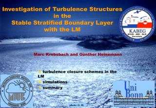 Investigation of Turbulence Structures  in the Stable Stratified Boundary Layer with the LM