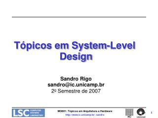 Tópicos em System-Level Design