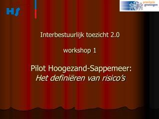 Interbestuurlijk toezicht 2.0 workshop 1 Pilot Hoogezand-Sappemeer: Het definiëren van risico's