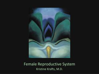Female Reproductive System Kristine Krafts, M.D.