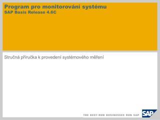 Program pro monitorování systému SAP Basis Release 4.6C