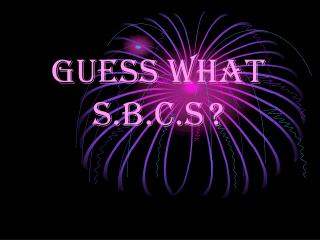 GUESS WHAT S.B.C.S ?