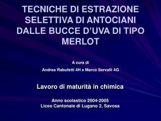 TECNICHE DI ESTRAZIONE SELETTIVA DI ANTOCIANI DALLE BUCCE D'UVA DI TIPO MERLOT