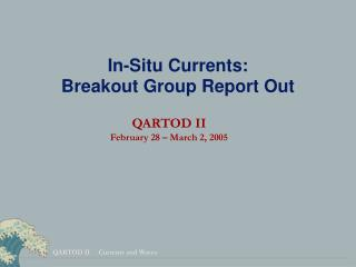 In-Situ Currents: Breakout Group Report Out