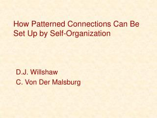 How Patterned Connections Can Be Set Up by Self-Organization